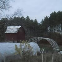 Spring Hollow Farm