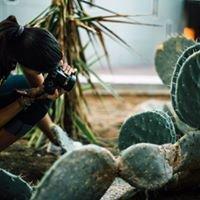 Palomar College Photography