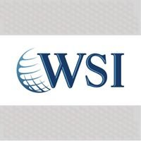 WSI Web Success