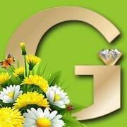 Gems N' Loans