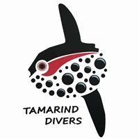 Tamarind Divers Lembongan