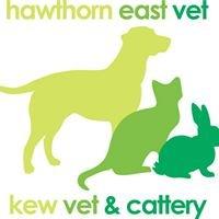 Hawthorn East Vet and Kew Vet