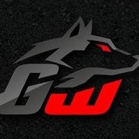 Golden Wolf Racing