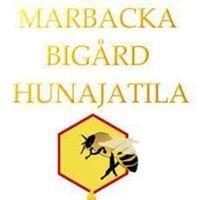 Marbacka bigård