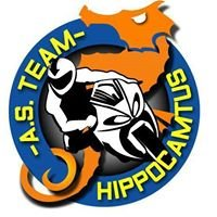 As Team Hippocamtus