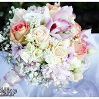 Acapólko Hurtownia Kwiatów Doniczkowych