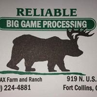 Reliable Big Game Processing