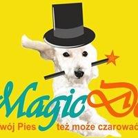 Magicdog