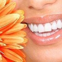 Dentist - Chesapeake Smiles Dental