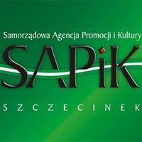 Sekcje i kluby SAPiK