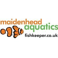 Maidenhead Aquatics at Reading