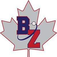 The Baseball Zone