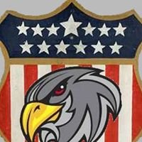 Falcon Investigations & Legal Services LLC