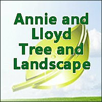 Annie and Lloyd Tree and Landscape