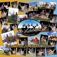 Sunfish Valley Whitetails