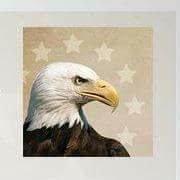Eagle Eye Security LLC