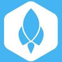 Phoenix Software Company