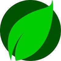 GreenCars-Rental