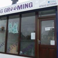 Dog Grooming by Rebecca