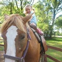 Teusink's Pony Farm