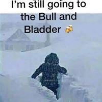 Bull and Bladder