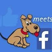 Promotional Products newdog