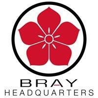 Bray Group - Windshield Skin