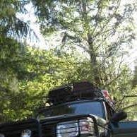 GreenDog Rovers