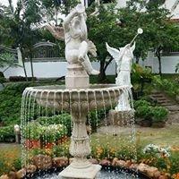 Dream Garden Design