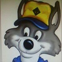 Cub Scout Pack 184 Austintown, Ohio
