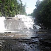 Dupont National Forest