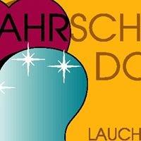 Fahrschule Dorn