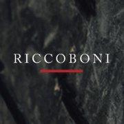 Riccoboni Couverture & Zinguerie du Patrimoine à Paris