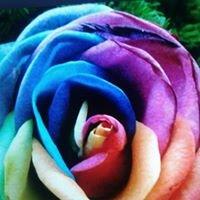 Hurtownia kwiatów FIORI