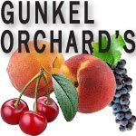 Gunkel Orchards