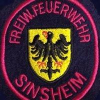Feuerwehr Sinsheim