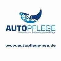 Autopflege Ralph Theiss