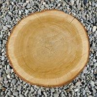 Bau Barth Holzwohnbau