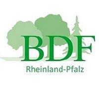 BDF Rheinland-Pfalz