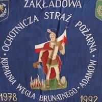 """Ochotnicza Straż Pożarna  KWB """"Adamów"""" SA ( Volunteer Fire Brigades )"""