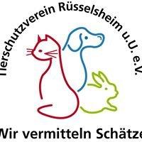Tierschutzverein Rüsselsheim und Umgebung e.V.