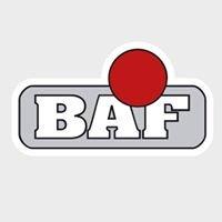 BAF Industrie- und Oberflächentechnik GmbH