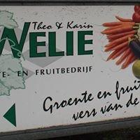 Fruitteeltbedrijf van Welie