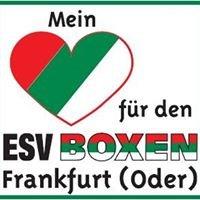 Esv Boxen Frankfurt
