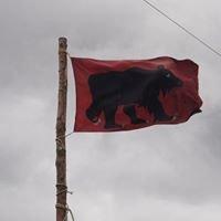Stamm Bären