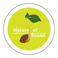 Nature of Sound