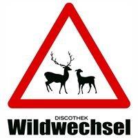 Discothek Wildwechsel