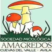 Sociedad Micológica Amagredos