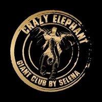 Crazy elephant - קרייזי אלפנט