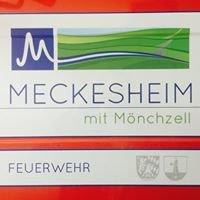 Feuerwehr Meckesheim